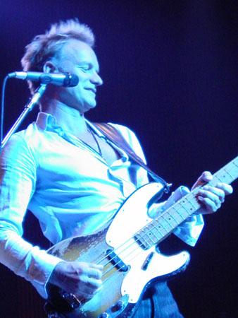 Sting- Credit Sophia Dilberakis